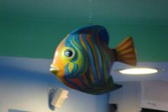 aquario-13