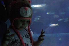 aquario_jun_2018-153