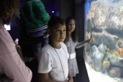 aquario_jun_2018-67